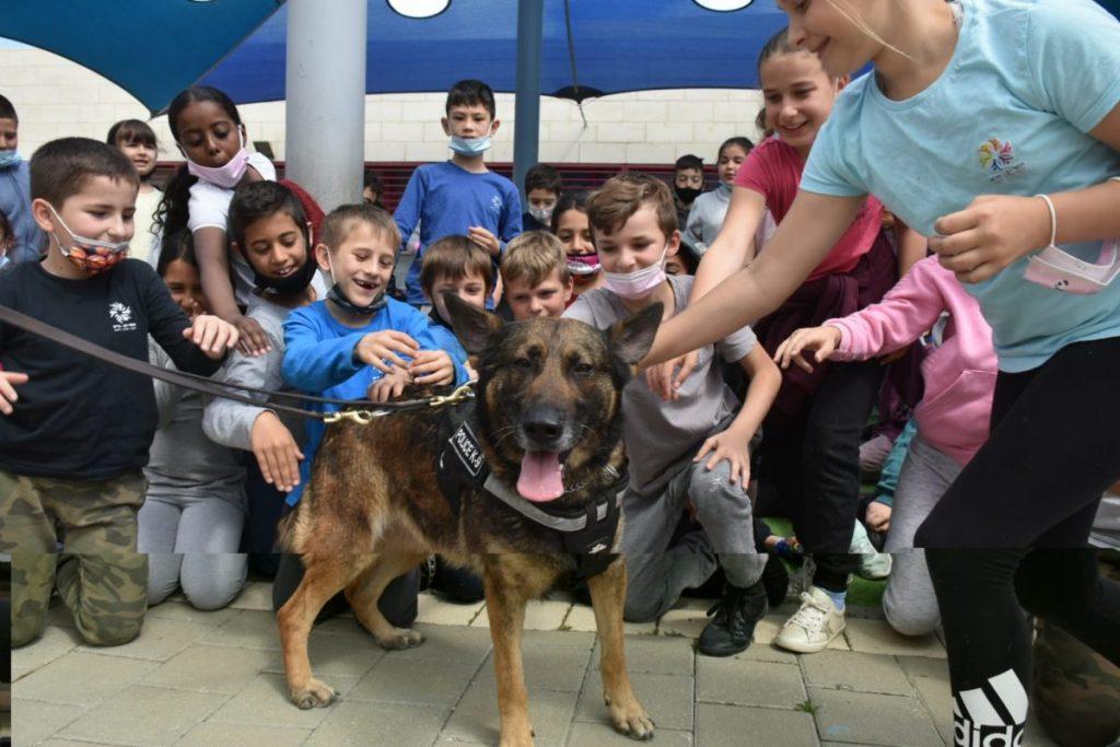 כלב משטרה תלמי רון